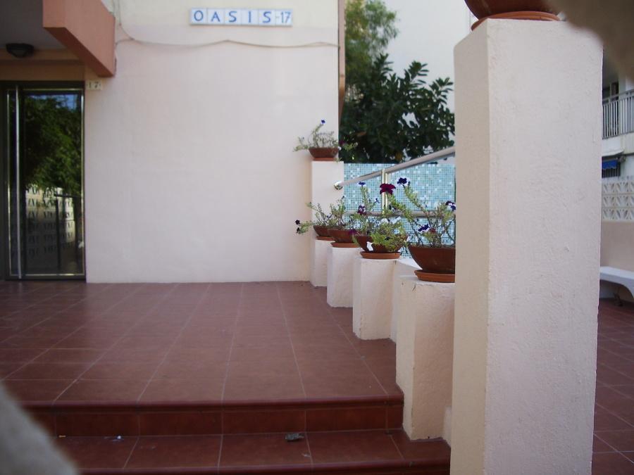 Oasis Gandia