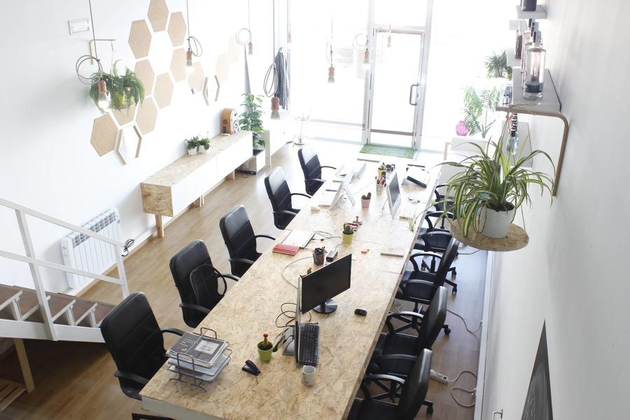 Oficina coworking -  Planta baja