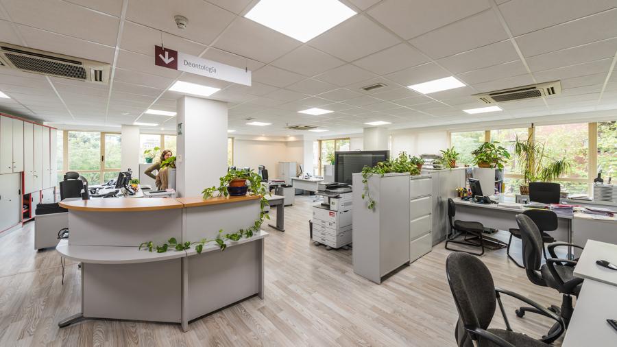 Reforma de las oficinas del colegio de abogados de madrid for Oficinas ss madrid
