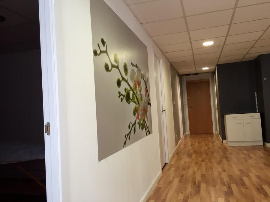 Centro de estetica y masaje revital salud ideas pintores - Paredes de pladur ...