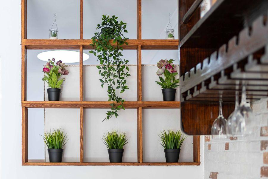 Pared con plantas de diferentes estilos