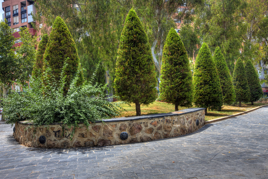 Parque de Los Juncos