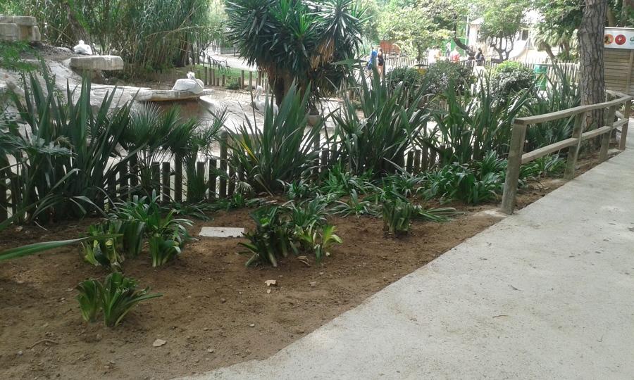 Proyecto paisajismo zoo barcelona ideas jardineros for Paisajismo barcelona