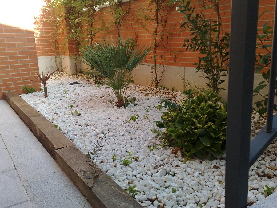parterre con manto de piedra blanca y plata ornamiental - Jardineras De Hormigon