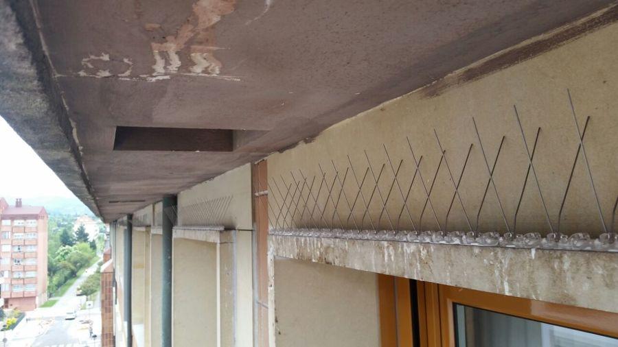 Colocaci n de pinchos anti palomas en fachada ideas for Pinchos para palomas