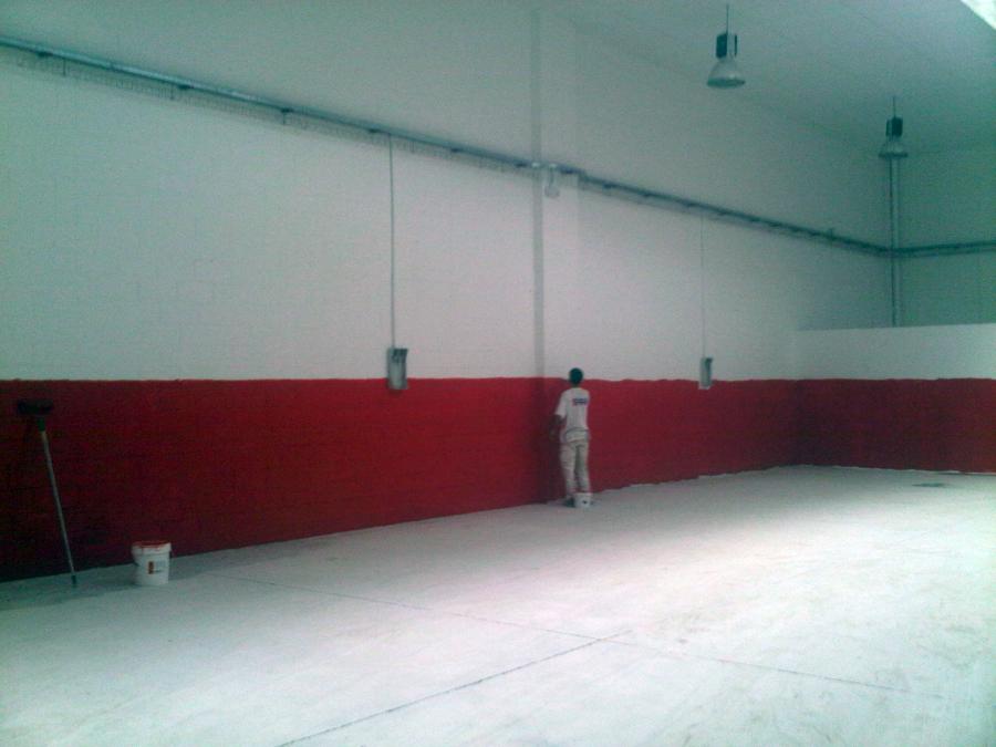Pintado de paredes y suelos en nave taller mecanico - Pintado de paredes ...