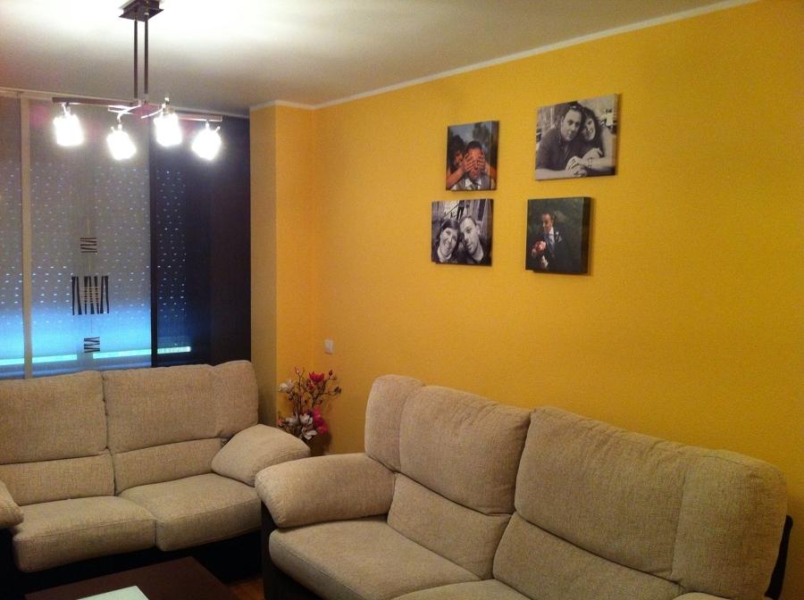 Pintar vivienda ideas reformas viviendas - Pintar paredes con humedad ...