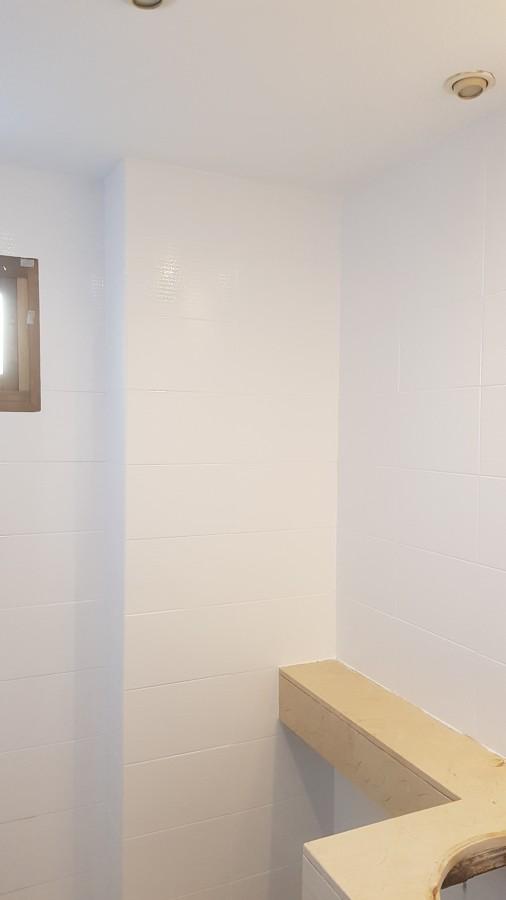 pintura de baño