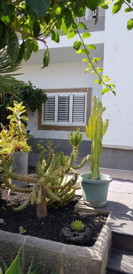 pintura exterior de vivienda 12.JPG