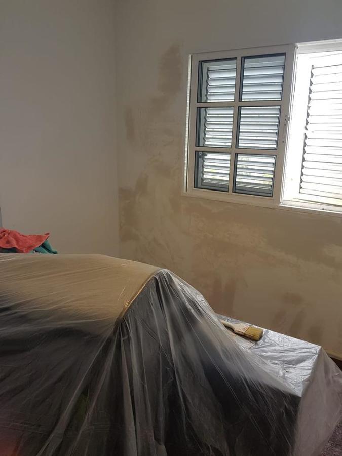 pintura interior de vivienda Abril 8.JPG