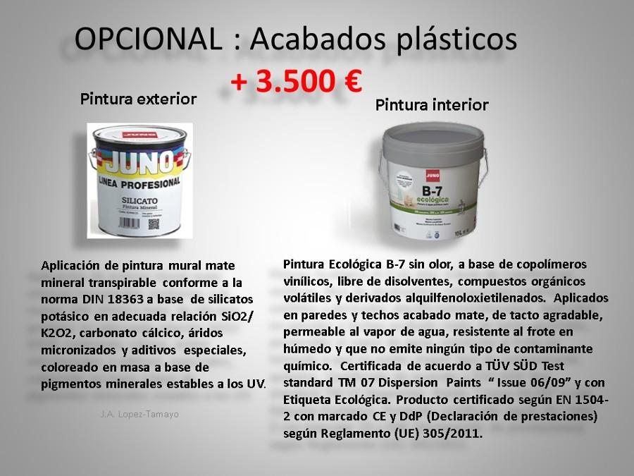PINTURA PLASTICA (OPCIONAL)