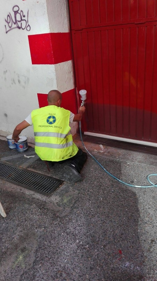Pintura puerta automatica