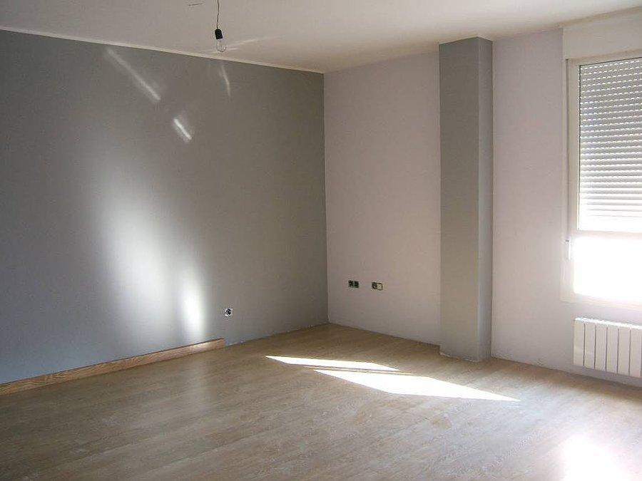 Pintura color gris ideas para pintar el saln en dos - Color pintura salon ...