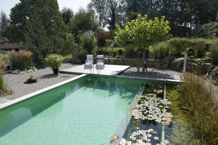 Piscinas naturales tu chapuz n m s dulce y ecol gico for Construccion piscinas naturales
