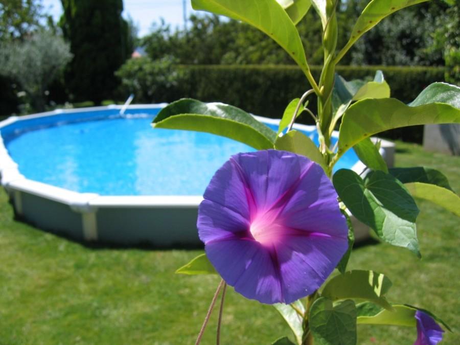 Ventajas de las piscinas desmontables ideas for Que poner debajo de una piscina desmontable