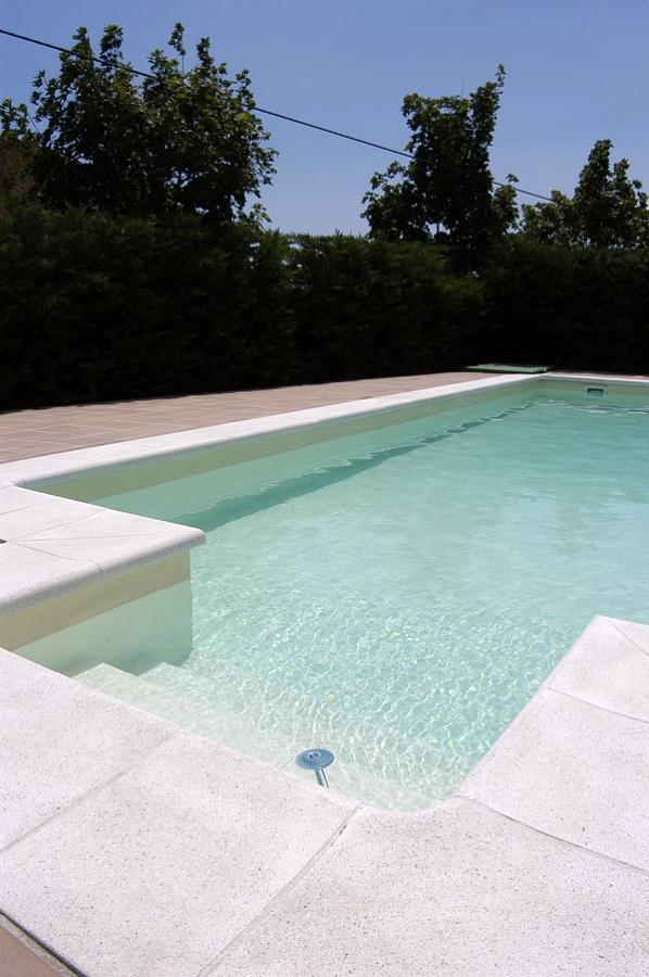 L mina arena barcelona ideas construcci n piscinas - Construccion piscinas barcelona ...