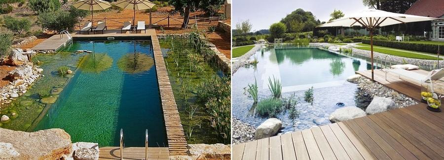 Adi s a los qu micos llegan las piscinas sin cloro for Como hacer una piscina ecologica