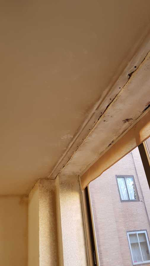 pladur en mal estado y techo en peor condicion