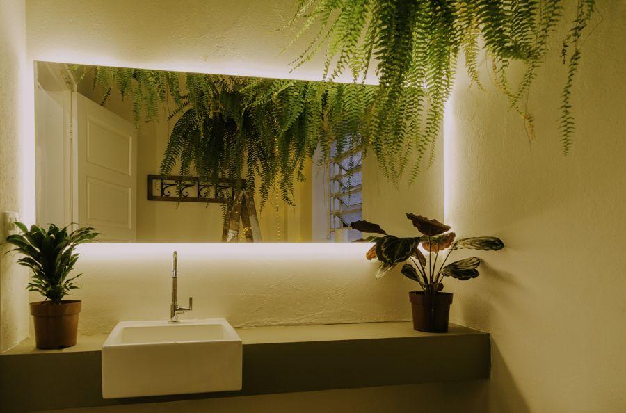 Planta en baño