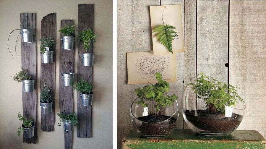 Foto plantas aromaticas de miriam mart 823966 habitissimo for Plantas aromaticas de interior