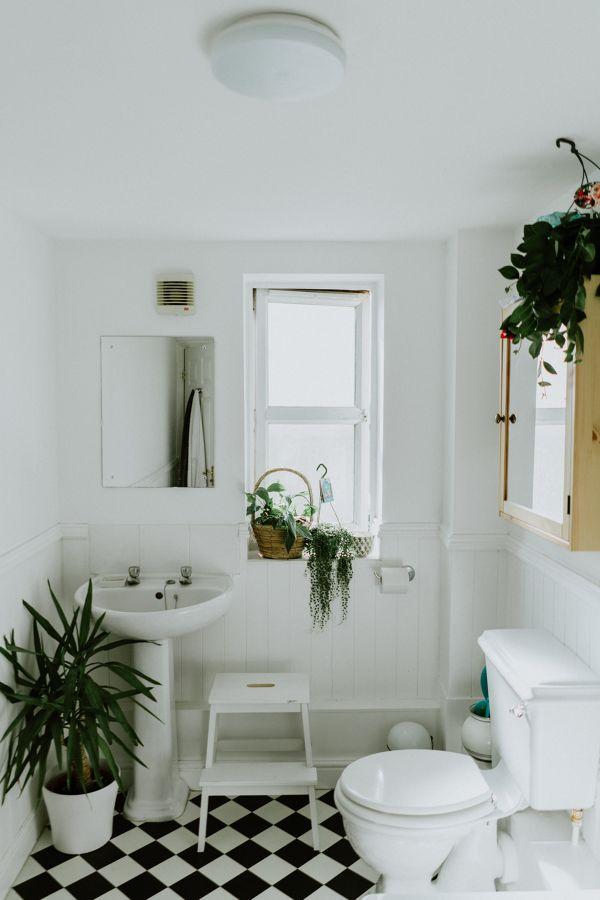plantas baño