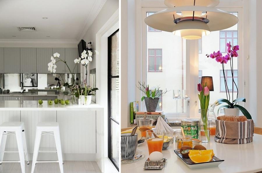 Decora con orqu deas elegantes y delicadas ideas - Plantas en la cocina ...