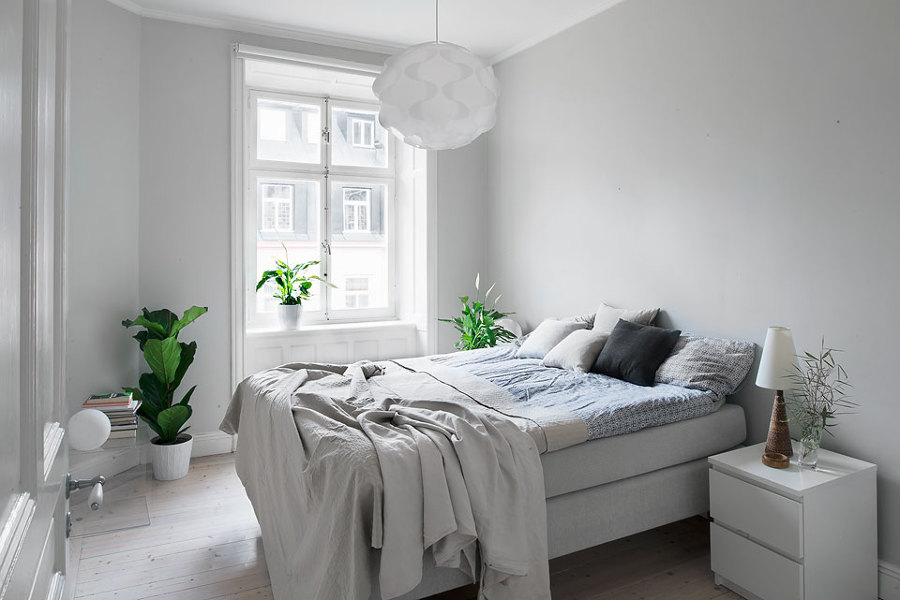 Foto plantas habitaci n blanca de decoratualma 870704 for Habitacion lila y blanca