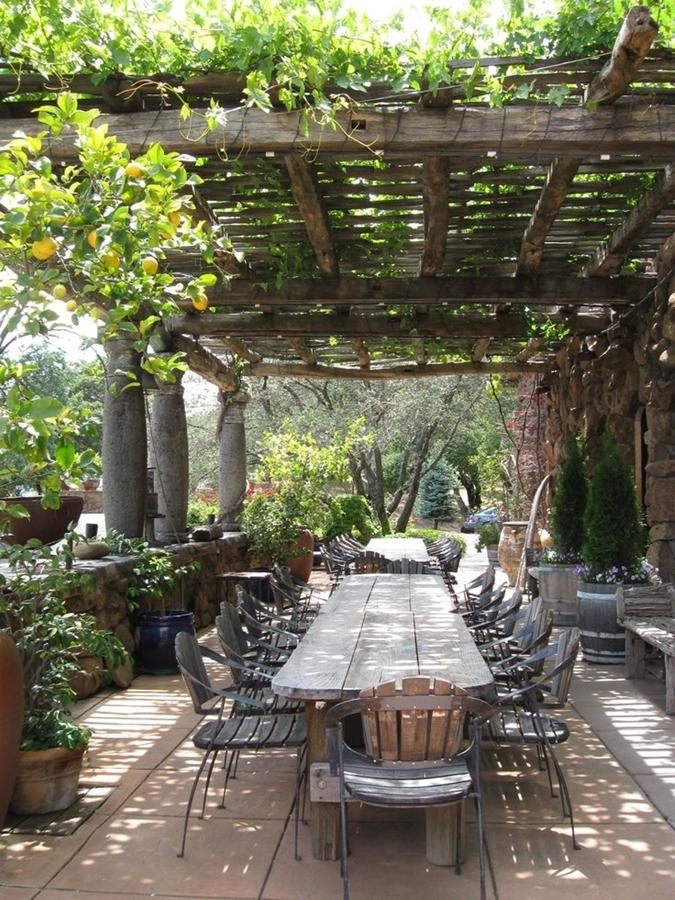 Plantas Para Terraza Con Mucho Sol. Beautiful Awesome Cheap ...