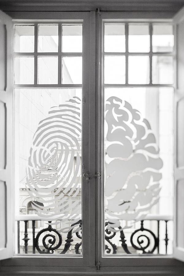 Proxectos F1-Neurozona