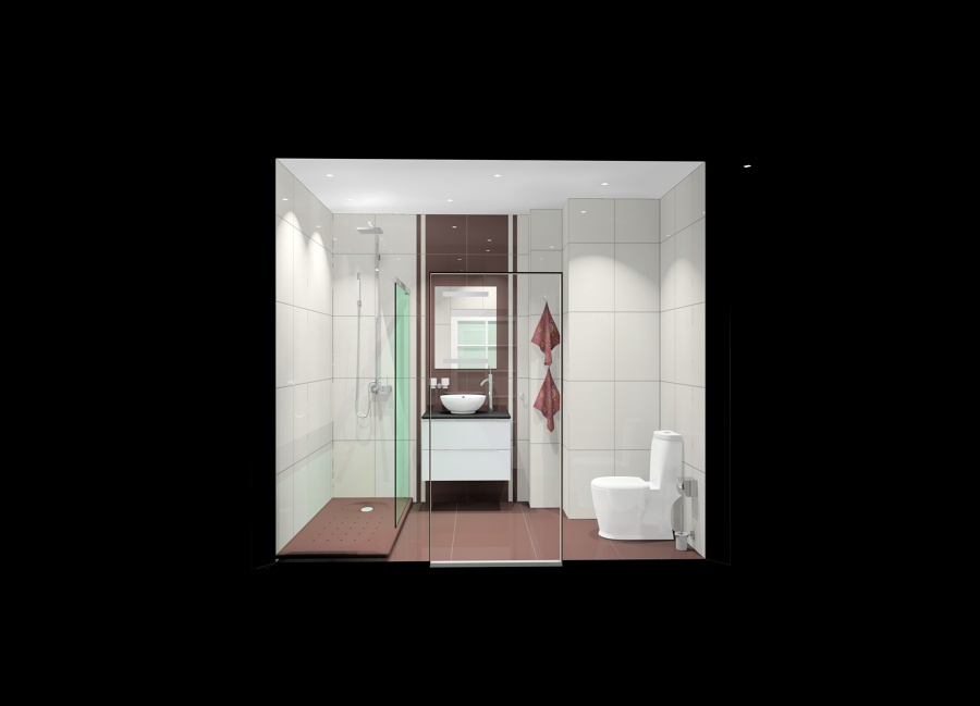 Proyecto decoracion de ba o ideas construcci n casas for Construccion banos pequenos