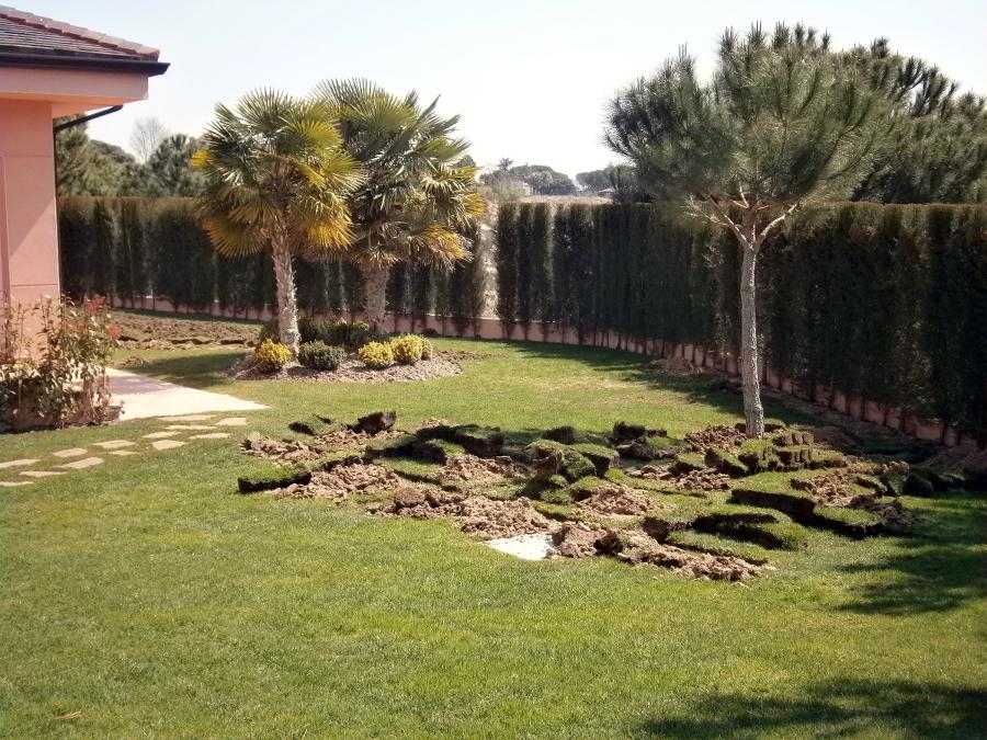 Arreglo de jard n ideas jardineros for Drenaje de jardin