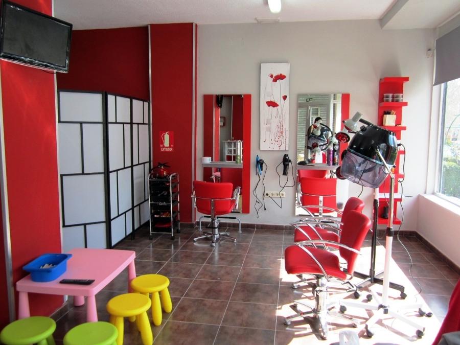 Proyecto t cnico para peluquer a ideas licencias - Proyecto de peluqueria ...