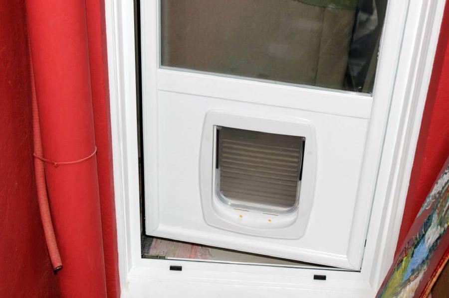 Foto Puertas Con Gatera De Alcalum 431993 Habitissimo