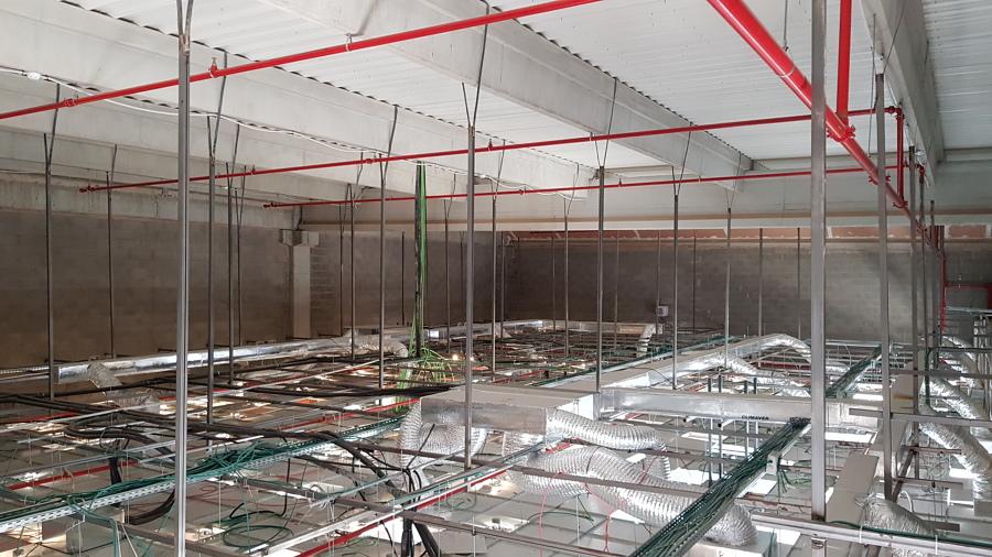 Ramales para rociadores montantes y falso techo