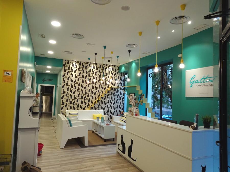 Clinica veterinaria ideas reformas locales comerciales - Proyecto clinica veterinaria ...