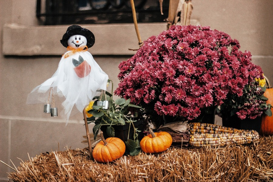 recibidor Halloween