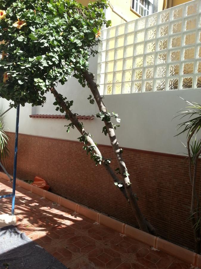 Reforma de patio interior