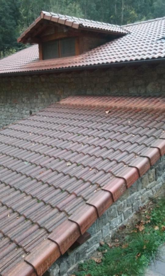 restauracion se tejado