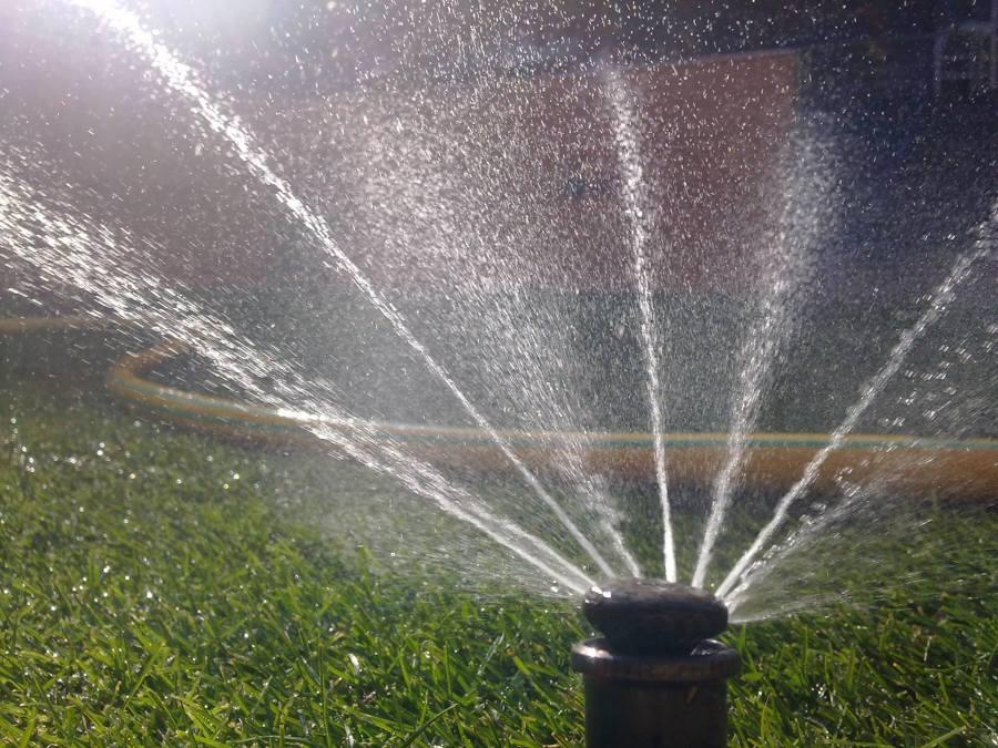 Foto riego aspersion de arboj 757660 habitissimo for Instalacion riego jardin