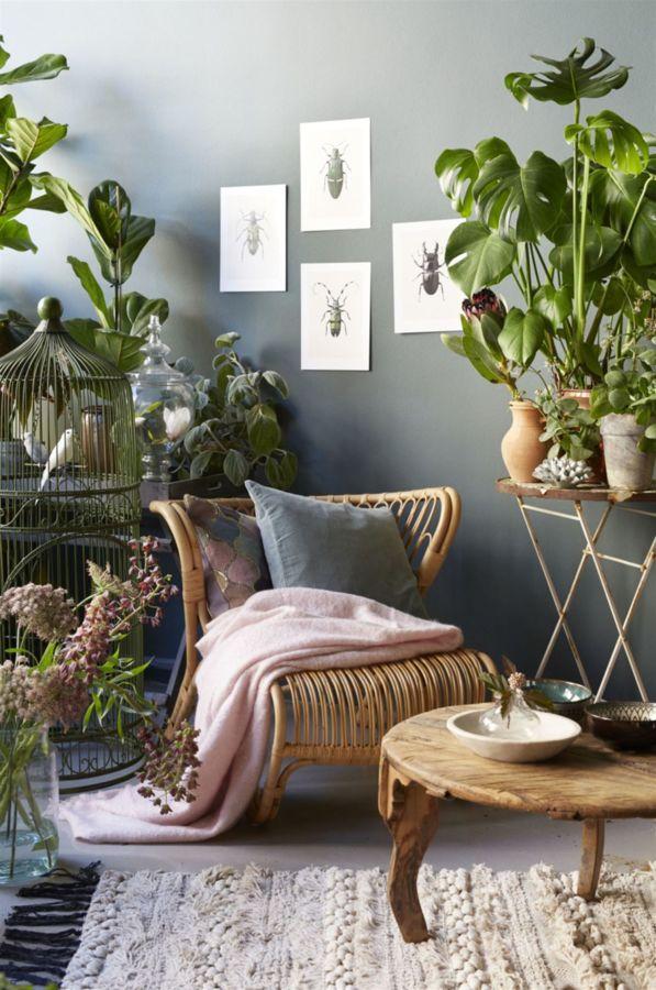 RIncón lectura rodeado de plantas