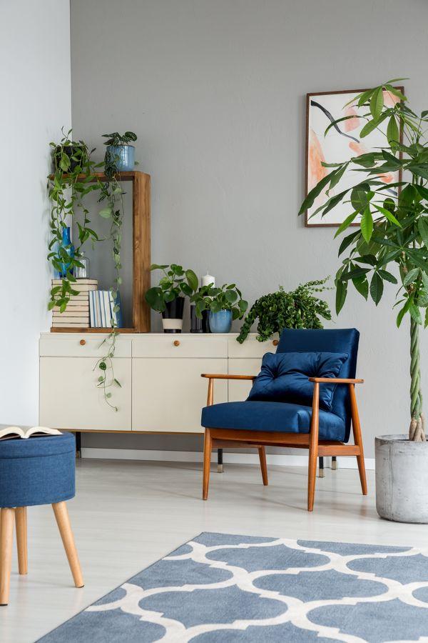 Salón con aparador y plantas decorativas