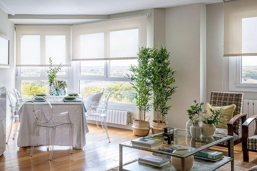 Salón con grandes ventanales y plantas de bambú