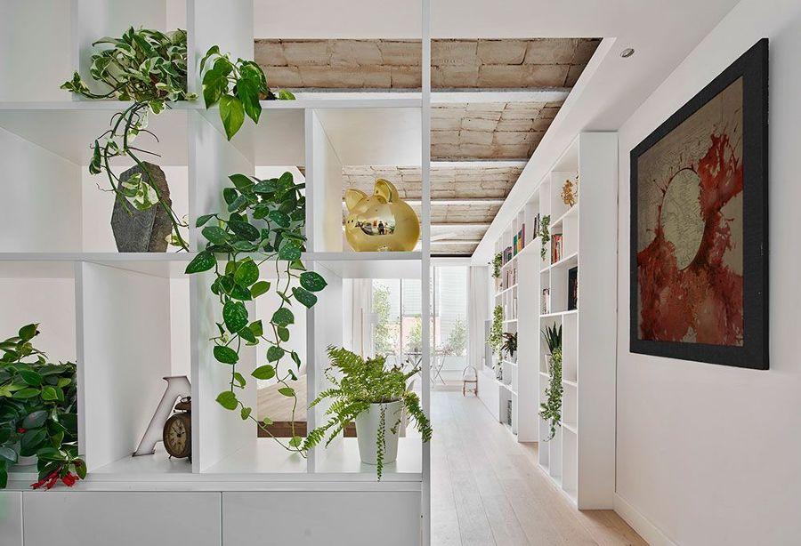 Salón con librerías de obra y plantas