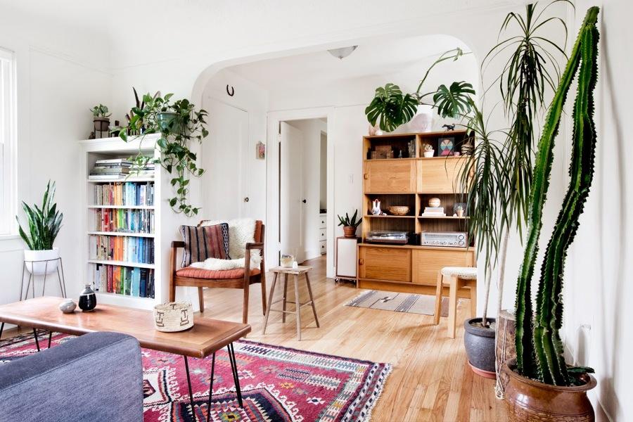 Sin terraza ni balc n c mo hacer un jard n interior for Plantas salon