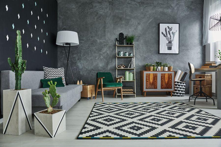 Salón en negro con cactus decorativos