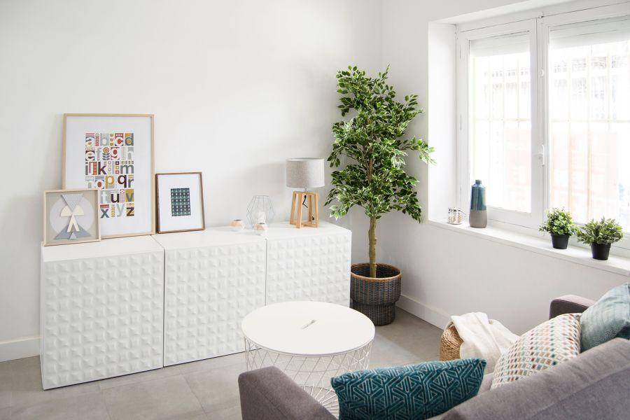 Salón estilo nórdico con planta