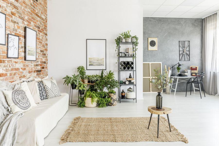 Salón estilo nórdico con plantas decorativas