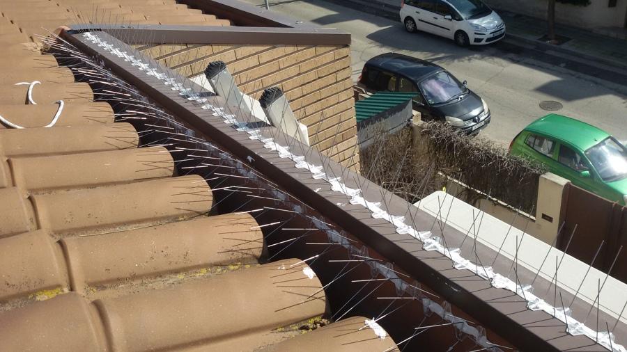 Sistema anti-palomas