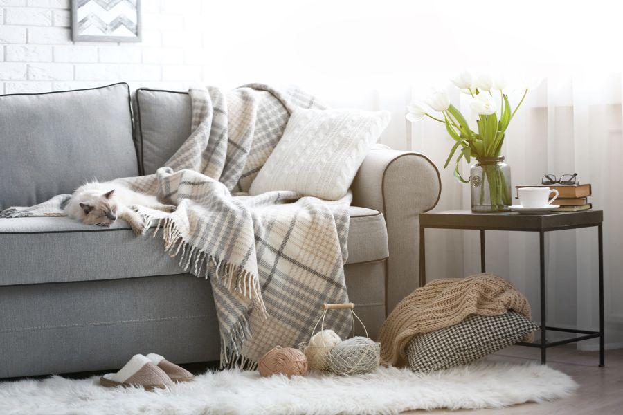 Sofá con manta