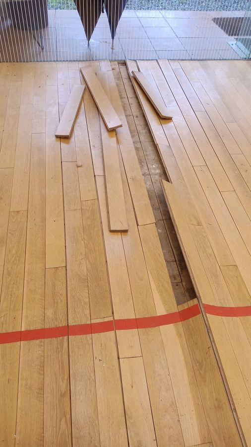 Squash madera roble dañado 5